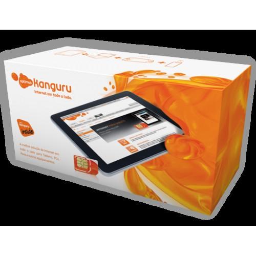Cartão Kanguru Inside 1GB